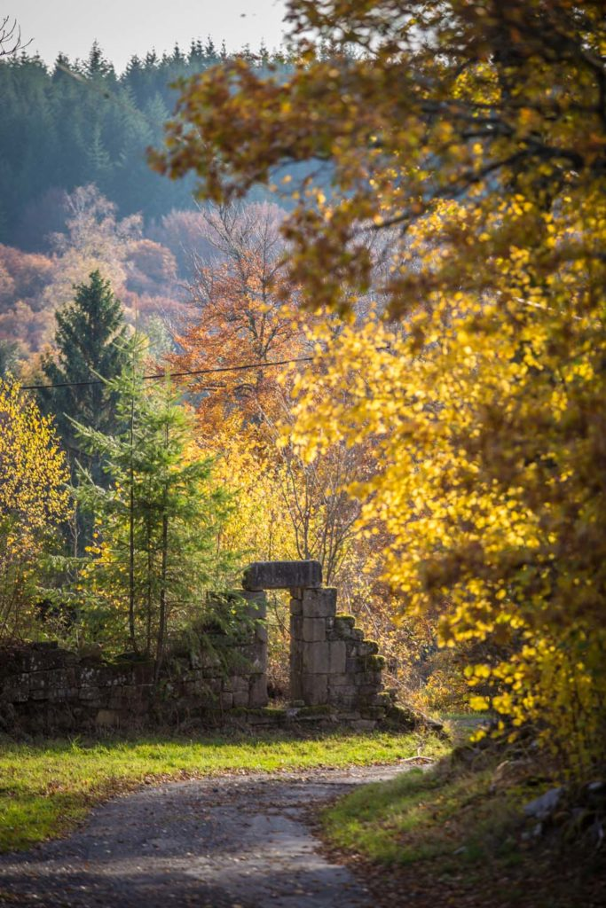Corrèze en automne-3