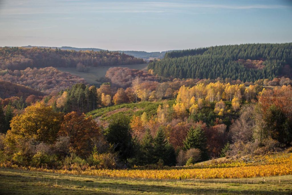 Corrèze en automne-5